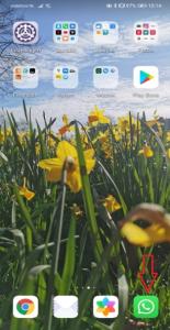 Videobellen via WhatsApp startscherm